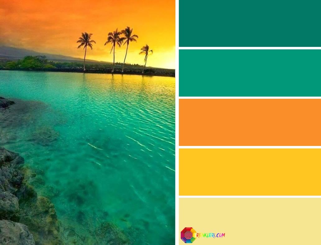Renkleri renk tonları ve renk kodları
